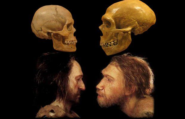confronto-sapiens-neanderthal