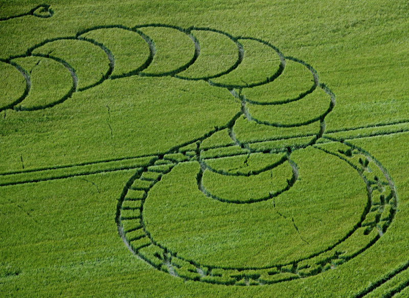 Alien Wormhole Crop Circle at Boreham Woods, near Lockeridge, Wiltshire 5th July 2012 Close Up View Tail Wormhole.jpg