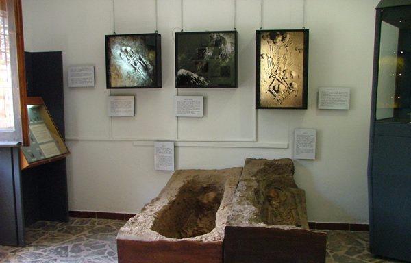121 - Calabria - Papasidero - Museo archeologico - dettagli